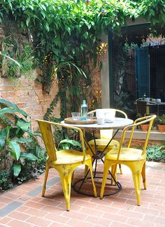 Decoração de jardim. Jardim dentro de casa.