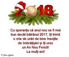 Cu speranța că anul nou va fi mai bun decât bătrânul 2017, îți trimit o mie de urări de bine însoțite de îmbrățișări și îți urez un An Nou Fericit!