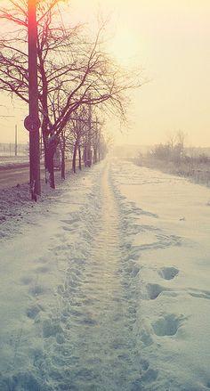 Nice winter light.