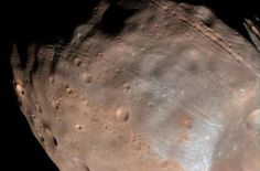 The long, shallow grooves lining the surface of Phobos are likely early signs of the structural failure that will ultimately destroy this moon of Mars. Orbiting a mere 6,000 km above the surface of Mars, Phobos is closer to its planet than any other moon in the solar system. Mars' gravity is drawing in Phobos, the larger of its two...  Read More