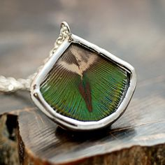 Real Peacock Feather Necklace. $30, via Etsy #housethatcrowbuilt