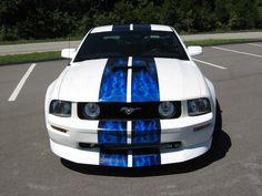 Mustang.... awesome electric blue paint job!