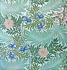 The policy of abstention - William Morris