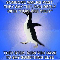 Socially Awkward Penguin | just looked at around twenty of these 'Socially Awkward Penguin ...