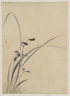Katsushika, Hokusai, 1760-1849: Grasses.