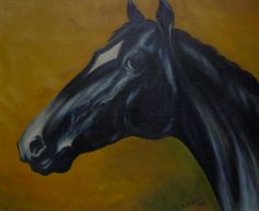 """Head of black horse"" Oil painting by Andrzej Kapela 1994"