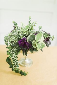 Spring centerpiece with green & purple leafy plants, not flowers   Purple Passion, Irish Moss, Creeping Fig or Ficus, Moon Valley and Peperomia 