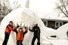 Winter Writing Prompt: What would you do if a snow shark swam into your yard? Was the shark friendly? What happened?