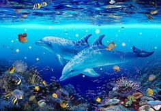 Sea Murals, Ocean Mural, Kids Wall Murals, Sea Life Art, Sea Art, Dolphin Art, Thomas Kinkade, Killer Whales, Tropical Fish