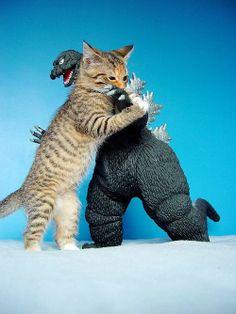 猫 VS ゴジラ - まとめのインテリア                                                                                                                                                     もっと見る