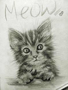 #kitten #drawing #pencil #cute Pencil drawing of a kitten