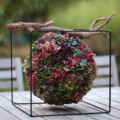 depth of field photography of multicolored petaled flower arrangement on under wood branch in black wired cube holder photo – Free Flower Image on Unsplash Hydrangea Bloom, Hydrangea Flower, Diy Flowers, Flower Decorations, Wedding Flowers, Hydrangeas, Art Floral, Design Floral, Deco Floral