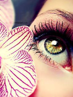 Beautiful Eye Makeup Macro Photography