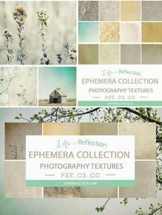 Ephemera Texture Collection Vol 3