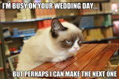Grumpy Cat Lunch - im busy on your wedding day but perhaps i can make the