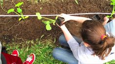 Schoolyard Farms (short): Building farms on schoolyards to nourish kids. Schoolyard Farms was our first funded project, in May 2012 Teaching Kids, Kids Learning, Things To Know, Things To Come, School Community, Urban Farming, Farms, Camping, Grow Food