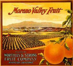 Riverside Moreno Valley Fruit Orange Citrus Fruit Crate Label Art Print   eBay