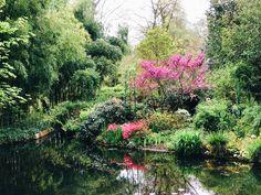 Claude Monet, River, Gallery, Garden, Outdoor, Bonjour, Outdoors, Garten, Roof Rack