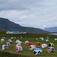 Rural-graffiti Graffiti On Hay Bales In Iceland.