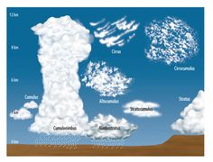 Super Subjects - Super Science - Life Science - Weather -Cloud Chart