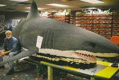 Career Thoughts interviews LEGO Master Builder Steve Gerling LEGO Great White Shark & Awsome combination of two things that are great, sharks and Lego. The post Career Thoughts interviews LEGO Master Builder Steve Gerling appeared first on Kristy Wilson. Casa Lego, Memes Arte, Big Lego, Lego Sculptures, Lego Animals, Nemo, Amazing Lego Creations, E Mc2, Lego Worlds