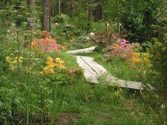 pitkospuut puutarhaan - Google-haku
