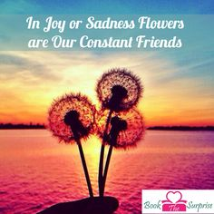 Image result for in joy or sadness flowers