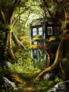 Tardis in the Woods by Jay-R-Took.deviantart.com on @DeviantArt