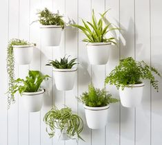 Even a porch or small patio can be home to a lush garden display. Our handcrafted Athens Wall Planter is designed for vertical plantings, so you can enjoy more floor space for entertaining. Arrange several (each sold separately) at different heigh… Outdoor Planters, Hanging Planters, Outdoor Walls, Planter Pots, Wall Planters, Outdoor Spaces, Vertical Planting, Covered Back Patio, Wheelbarrow Garden