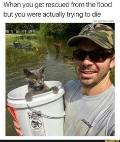 That look on that cat's face