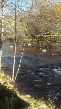 Downtime creekside #lauberge #oakcreek #creekside #downtime #beautifulday
