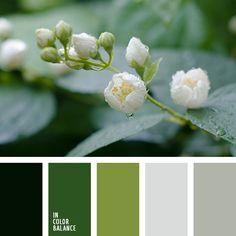 болотно-зеленый, зеленый и серый, монохром, оттенки болотно-зеленого цвета, оттенки зеленого, оттенки серого, светло серый, светло-зеленый, светло-зеленый и светло-серый, светло-серый и светло-зеленый, серебряный, серый и зеленый, темно серый,