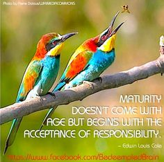 Maturity quote via www.Facebook/BedeempledBrain