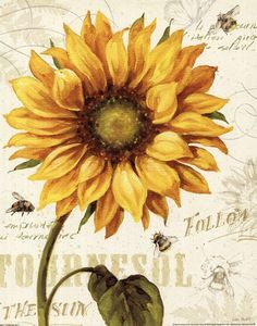 Trademark Fine Art 'Under the Sun I' by Lisa Audit Ready to Hang Canvas Wall Art Art Floral, Floral Wall, Floral Design, Sunflower Flower, Sunflower Tattoos, Yellow Sunflower, Sunflower Quotes, Decoupage, Canvas Artwork
