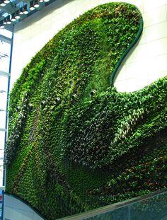 Muro vegetal en el Hotel Icon en Hong Kong (2) (China)