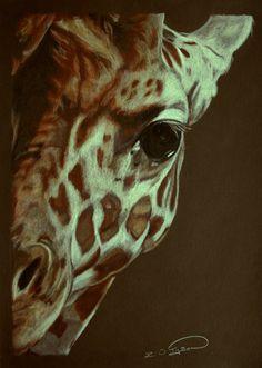 giraffe | Baby Giraffe by *RTyson on deviantART