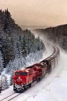 Net Photo: CP 8853 Canadian Pacific Railway GE at Lake Louise, Alberta, Canada by Matthew Hicks – eslessros. Canadian National Railway, Canadian Pacific Railway, Train Tracks, Train Rides, Holiday Train, Railroad Photography, Landscape Photography, Bonde, Train Art