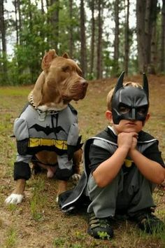 Do you love Pitbull? If yes read the types of Pitbull Breeds that are really popular right now. This list of Pitbull breed is very famous because of their extra ordinary characteristics Dogs And Kids, Animals For Kids, Animals And Pets, Dogs And Puppies, Cute Animals, Doggies, Love My Dog, Perros Pit Bull, American Bully