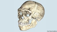 The oldest Homo sapiens yet