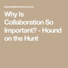 Why Is Collaboration So Important? - Hound on the Hunt