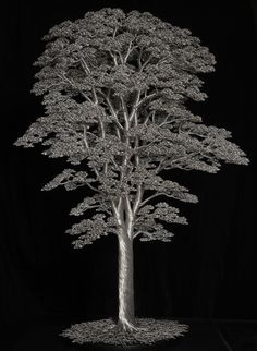 """Visit our web site for even more information on """"metal tree sculpture"""". It is a superb place to learn more. Wire Tree Sculpture, Sculpture Art, Copper Wire Art, Bonsai Wire, Wire Tutorials, Metal Tree Wall Art, Wire Trees, Steel Art, Wire Crafts"""