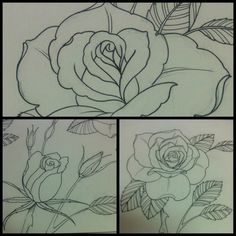 Roses, bruno lança.