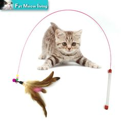 Gato de juguete Para Mascotas Diseño Lindo caliente de Alambre de Acero Feather Teaser Varita de plástico de Juguete para gatos Productos interactivos Para mascotas 110 cm Envío Libre