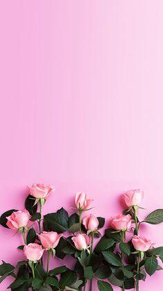 Pink wallpaper, pink wallpaper iphone и flower wallpaper. Tumblr Wallpaper, Pink Wallpaper Iphone, Nature Wallpaper, Rose Wallpaper, Painting Wallpaper, Mobile Wallpaper, Wall Wallpaper, Spring Wallpaper, Kawaii Wallpaper