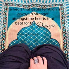 #muslimah #hijabi #hijab #mybeautyishijab #islam #islamicquotes #dunya #Allah