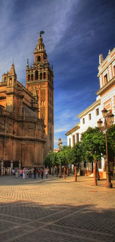 Seville Cathedral - Andalusia, Spain