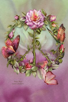 Peace Rose Mixed Media  - Peace Rose Fine Art Print ♥♥♥