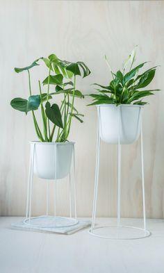 Wire Pot fra Menu kan brukes ute og inne, og er perfekt til å lage din egen lille jungel. Om vinteren kan du sette i en egen oljeinnsats, og bruke dem som stemningsfulle fakler ute. Du finner utvalget i din Designforevig-butikk!