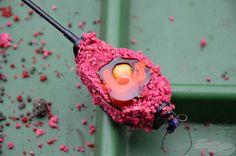 Jarní start s feederem