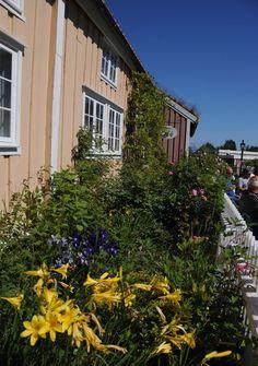 Bygata og Malis Café på Romsdalsmuseet - bed som i gamle dager skaper miljø og kos Sport, Places, Culture, Voyage, Deporte, Sports, Lugares